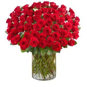 100-Red-Rose