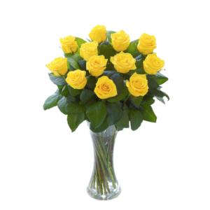 YellowRosedozen